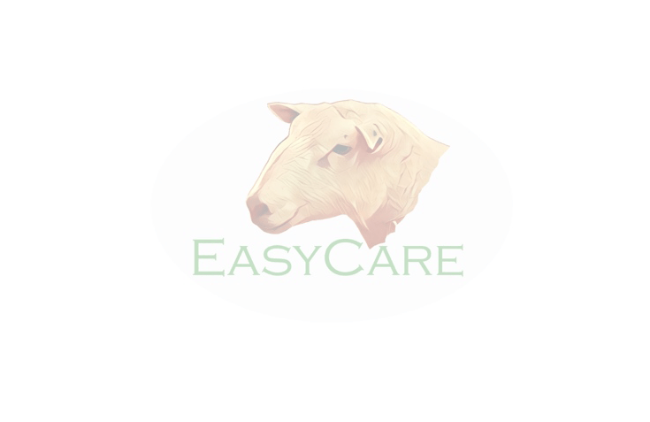 Easy Care Sheep placeholder image