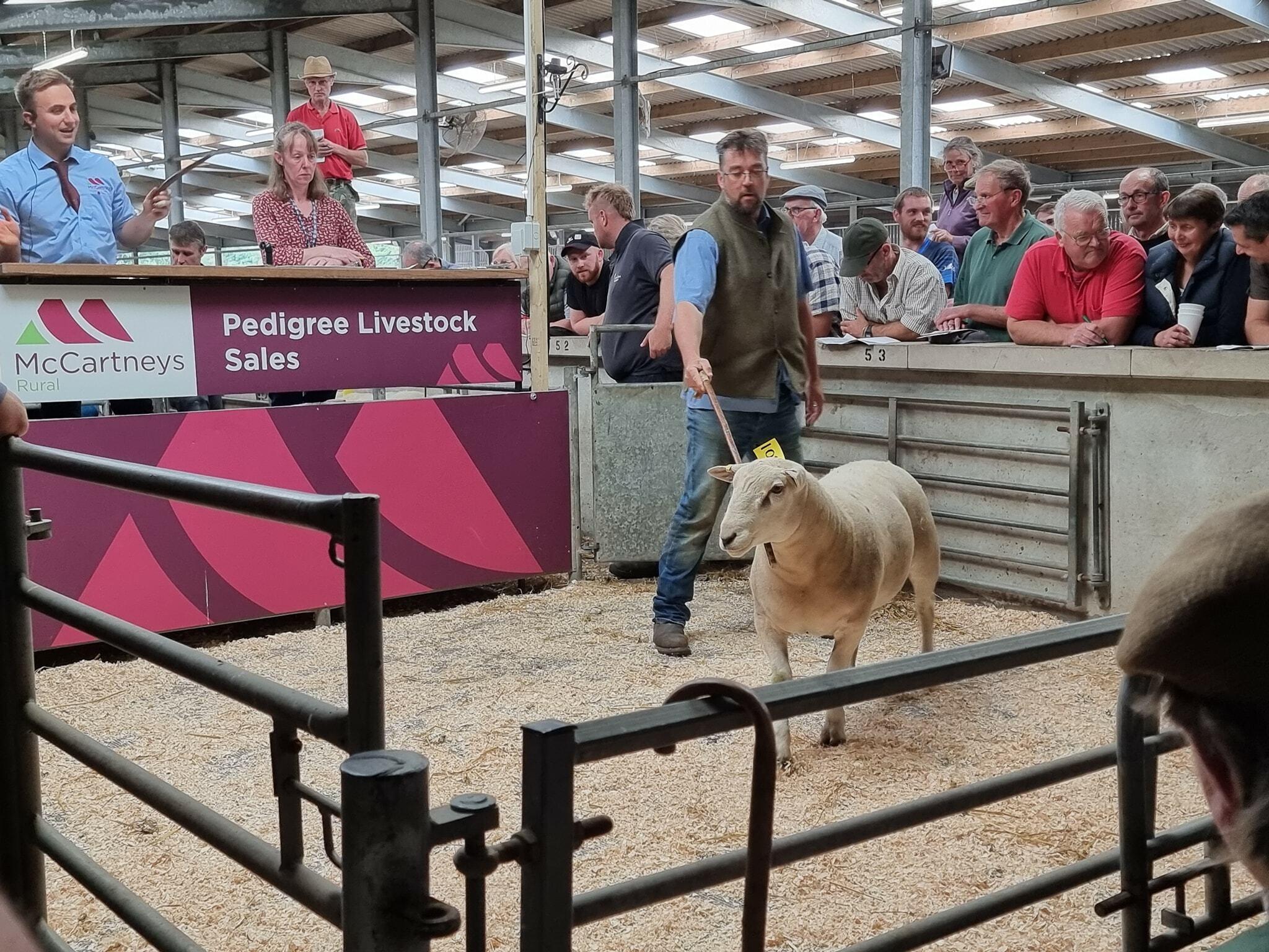 Graham Shepherd and top priced Worcester ram 2021