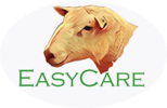 The Easy Care Sheep Society